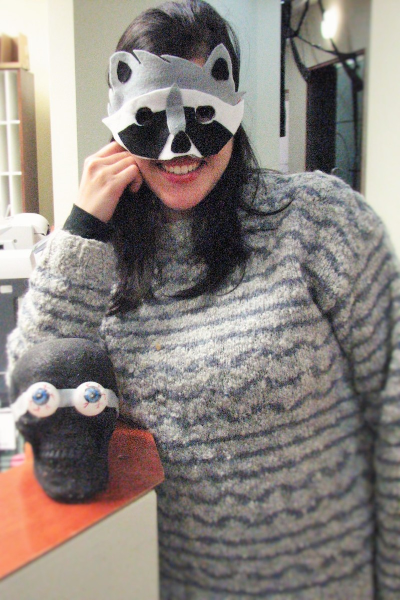 Last Minute DIY Raccoon Costume | Kiku Corner