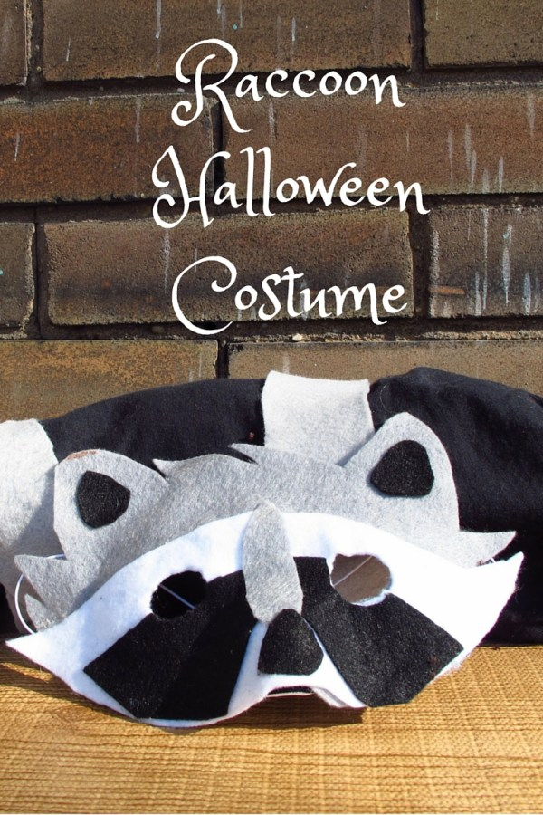 Raccoon Halloween Costume, Kiku Corrner