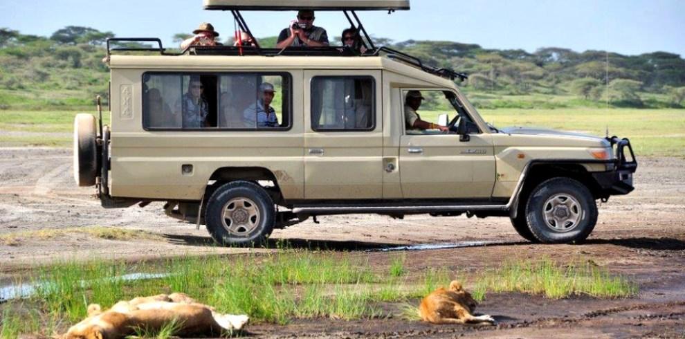 Game drive safaris