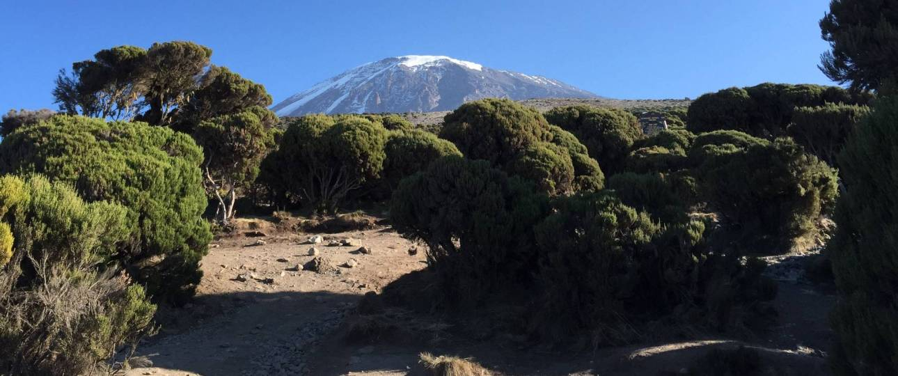 Kilimanjaro travel deals