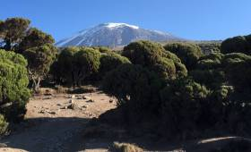 Kilimanjaro travel deals