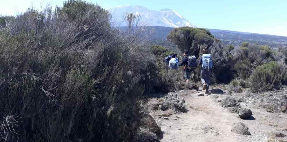 group climb Kilimanjaro