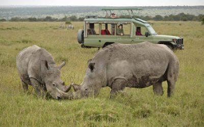 12 Days Bush to Beach Safari In Kenya  & Tanzania