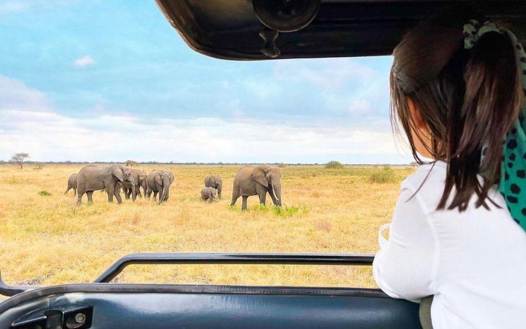 4 Days Tanzania Lodge Safari Tarangire & Ngorongoro Crater