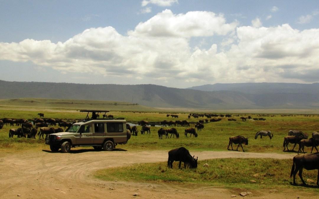 Ngorongoro Crater Day Tour – Group Joining Safari