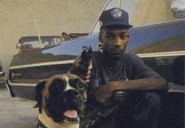 Snoop Dogg vetää keikan Suomessa elokuussa!