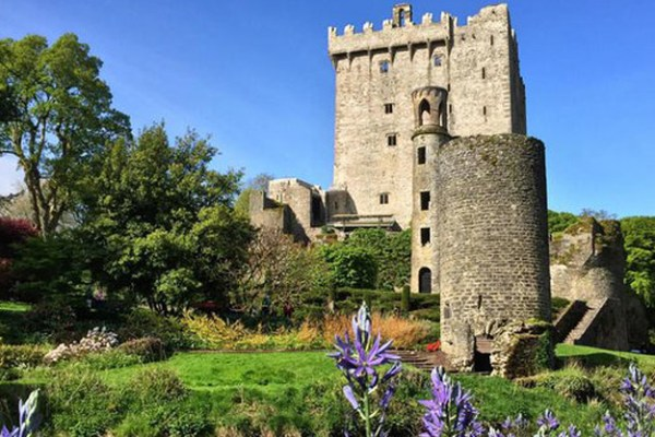 Check our our Blarney and Cobh tour. Blarney castle. Visit Blarney castle in Ireland.