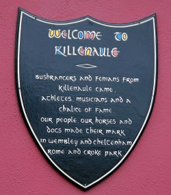 Welcome to Killenaule