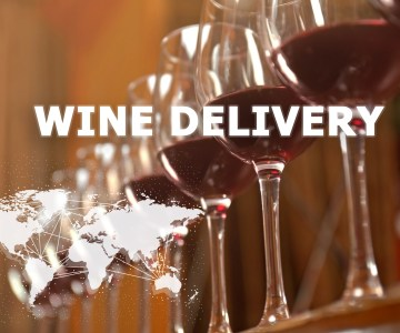 Complete Business Start-Up Guide: Wine Delivery App
