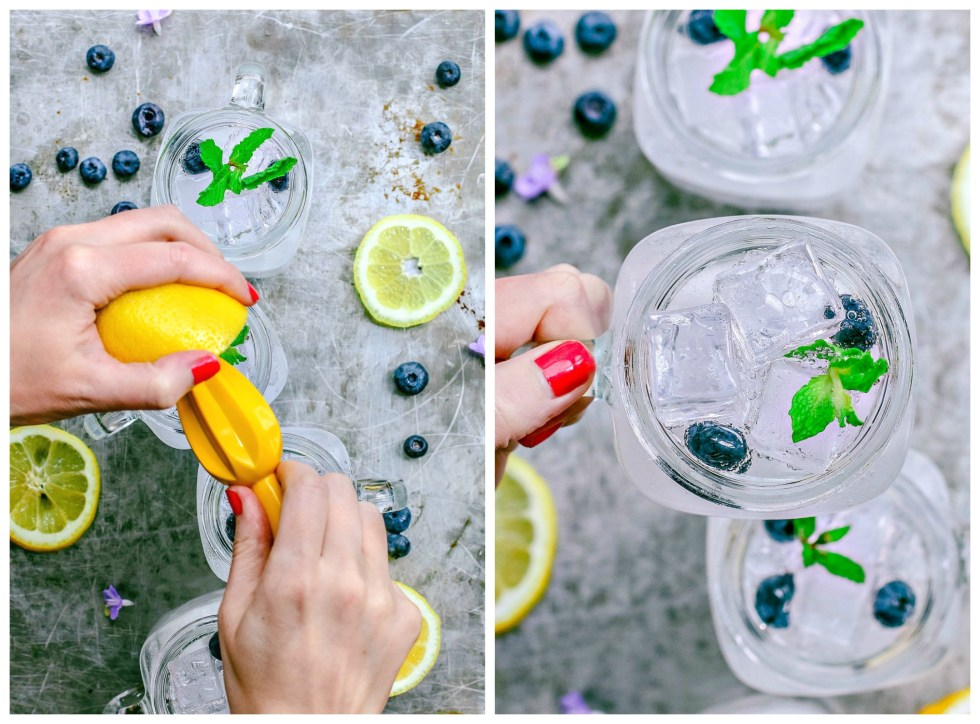 Blueberry Lemon Vodka Fizz | Killing Thyme
