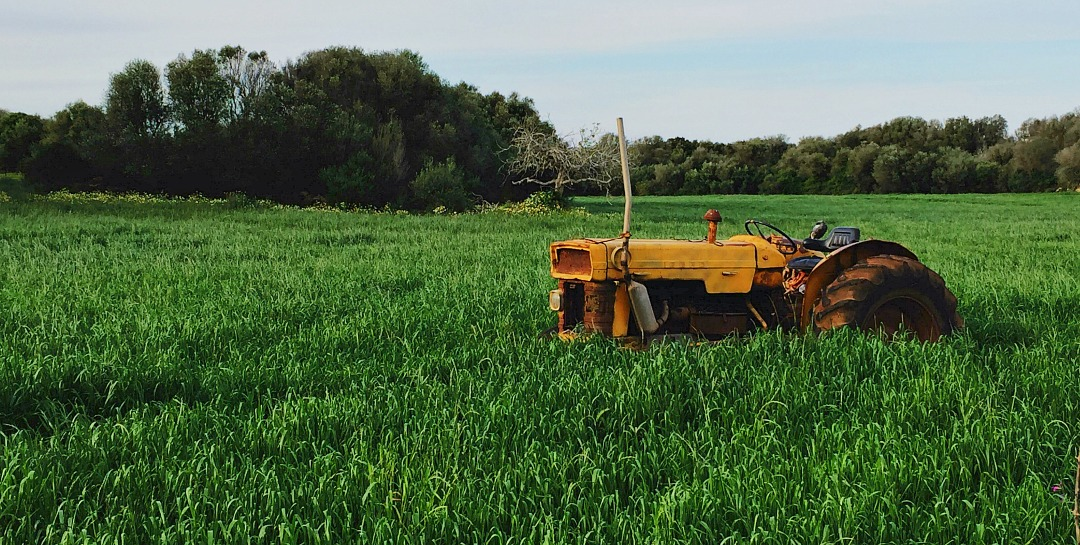 How to Support Local Farms—tractor in a grassy green field.