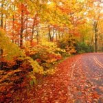 Fall Is Upon Us – Here Come The Seasonal Triggers