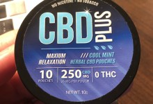 Photo of CBD Plus Herbal Pouches Review