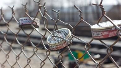 Skoal Fence