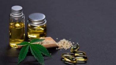 CBD Marijuana Oil