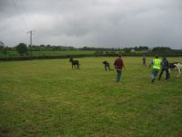 fieldday2006_026