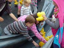 ducks2011_017