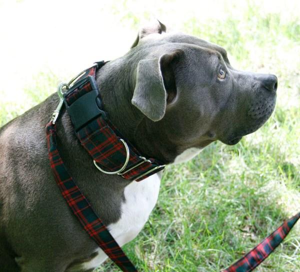 Light Weight Premium Wool 2-Inch Tartan Dog Collar and Leash Set