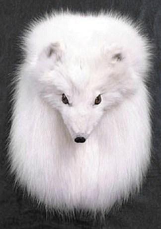 Arctic Fox Sporran