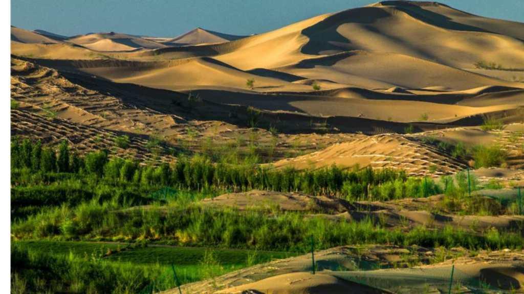 Deserts shrinking, China gets greener