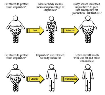 diet-vs-cleansing