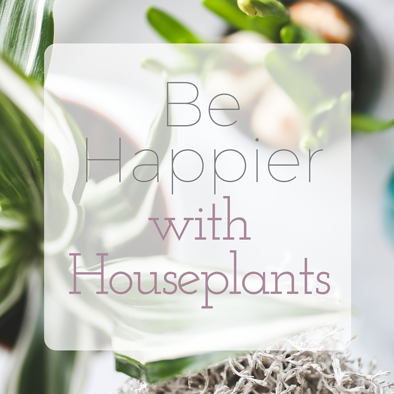 happy-houseplants
