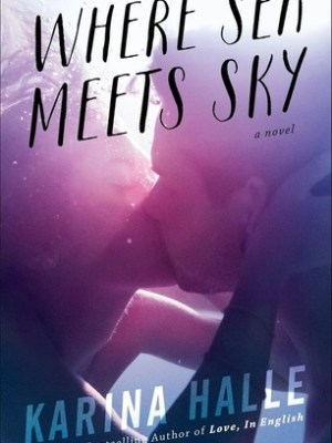 Blog Tour, Review & Giveaway: Where Sea Meets Sky by Karina Halle