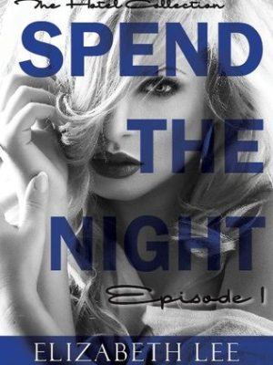 In Review: Spend the Night I (The Hotel Collection #1) by Elizabeth Lee
