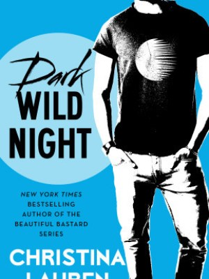 In Review: Dark Wild Night (Wild Seasons #3) by Christina Lauren