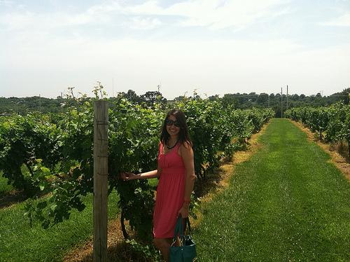 kimberlyloc at Stone Pillar Vineyard & Winery in Olathe, Kansas