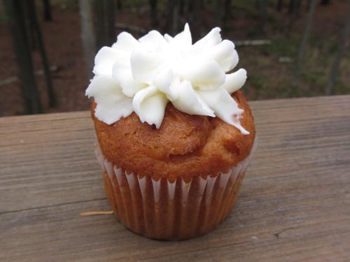 key lime cupcake sweet bakery baltimore maryland