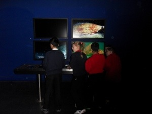 Class 5 went to The Deep in Hull to investigate rivers.
