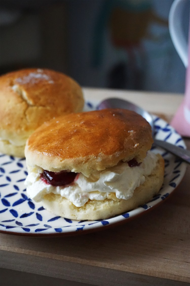 Easy plain gluten free scones with whipped cream and raspberry jam