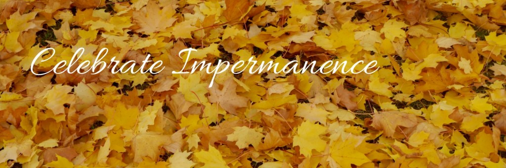 celbrateimpermanence