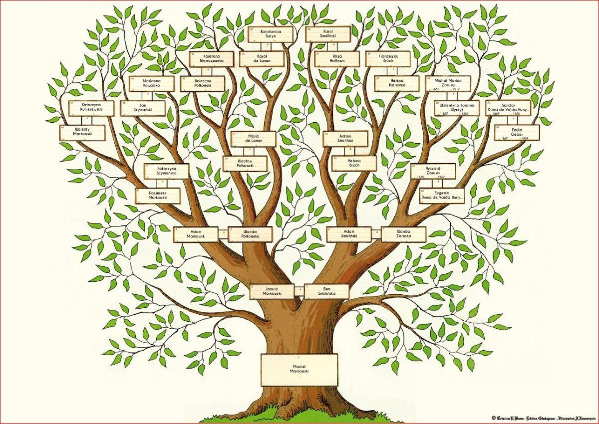 Wywód przodków czyli tzw. drzewo genealogiczne