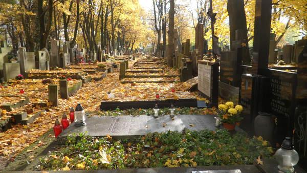 Jak zrobić drzewo genealogiczne - cmentarz