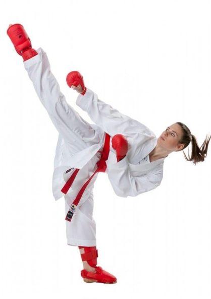 Tokaido kumite master raw 2