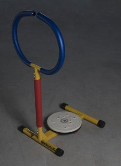 Twister Mini Gym