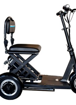 Triolete Scooter Eléctrico especial