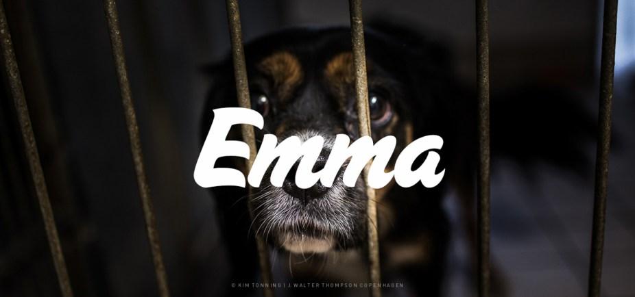 Emma_Galleri