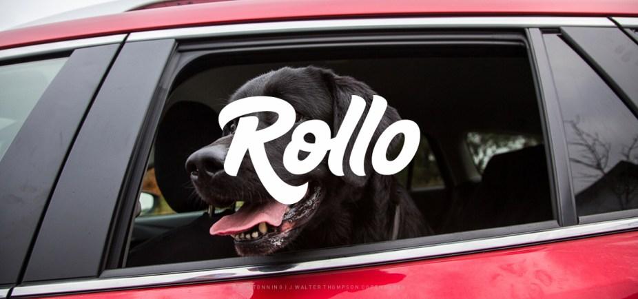 Rollo_Galleri