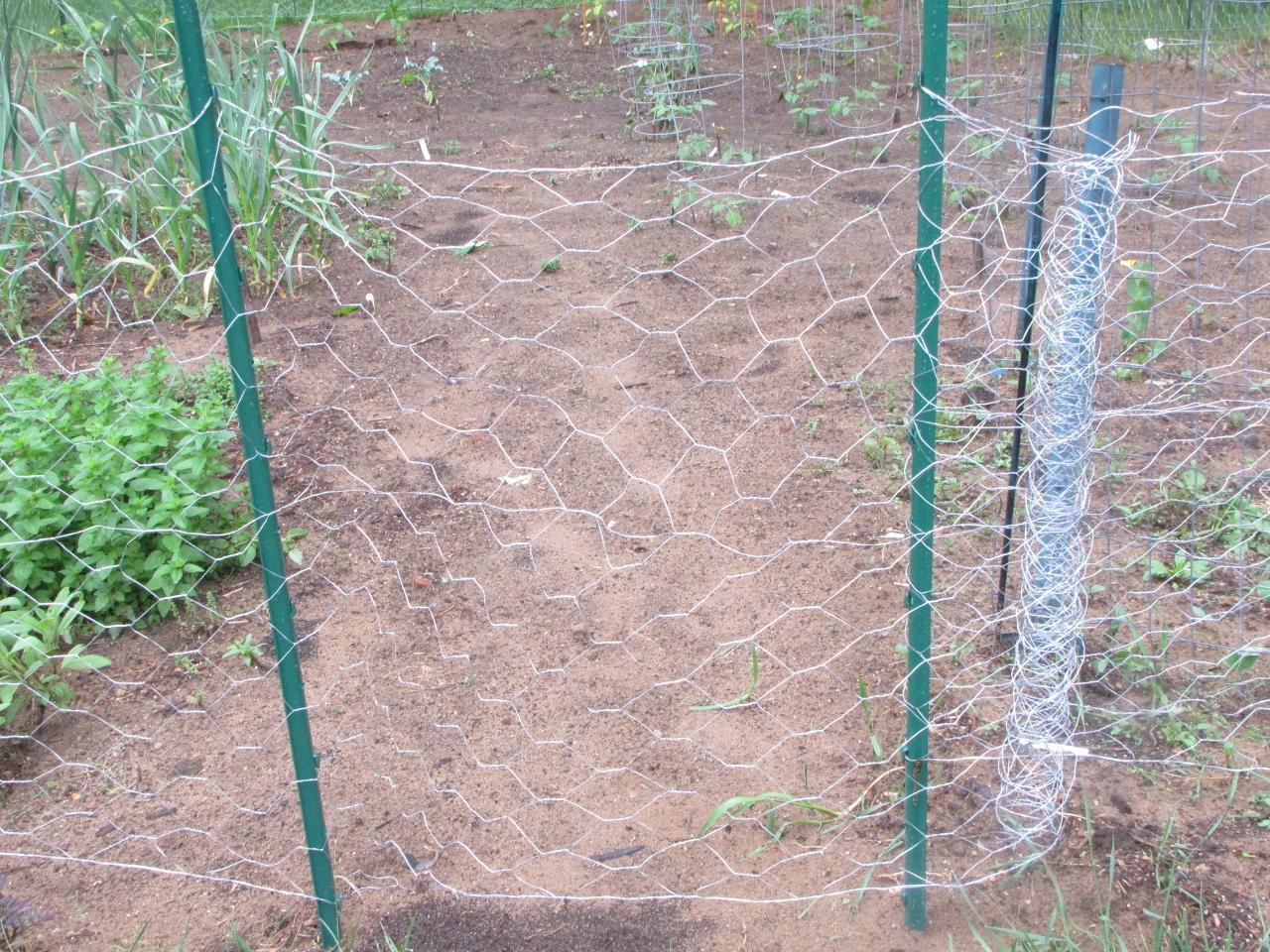 Fence Gates Chicken Wire Fence Gate