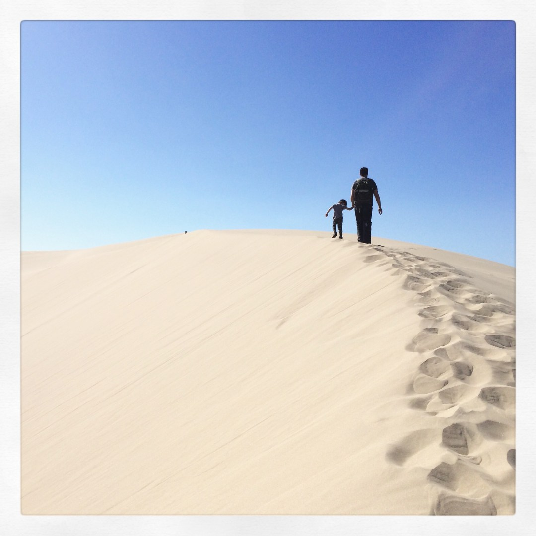 Atop the Oregon Sand Dunes