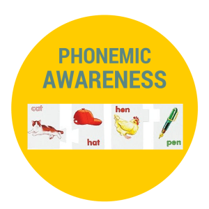 what is phonemic awareness