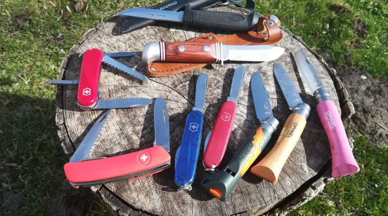 kindermesser test kindertaschenmesser schnitzmesser kinder alter messer schnitzen outdoor