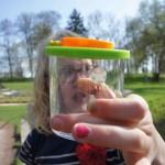 Mit der Becherlupe können die Outdoor Kinder beim Spielem am Wasser faszinierende Tiere wie den Wasserläufer genauer beobachten. Foto. (c) Kinderoutdoor.de