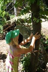 Im Wald mit Kindern bietet sich das Spiel Baumfinden an. Foto:(c) Kinderoutdoor.de
