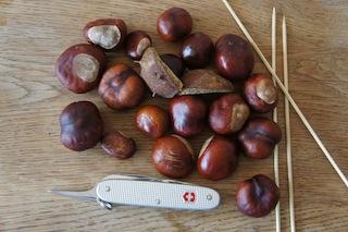 Basteln mit Kastanien: Hier ist alles was Ihr braucht um einen Ritter zu basteln. foto (c) Kinderoutdoor.de