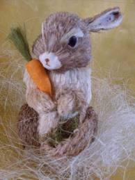 Het konijn en de wortel