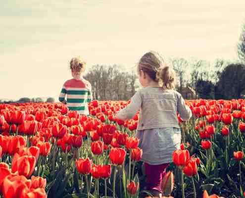 kids in a poppy field